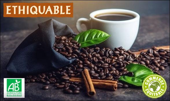 Cafés grain bio